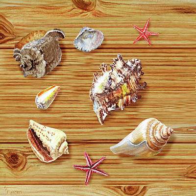 Painting - Seashells On Board by Irina Sztukowski