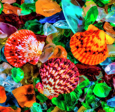 Photograph - Seashells On Sea Glass Two by Garry Gay