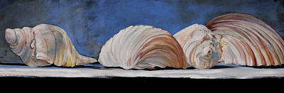 Still Life Royalty-Free and Rights-Managed Images - Seashells by Toni Grote