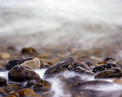 Photograph - Seashore  by Will Gudgeon