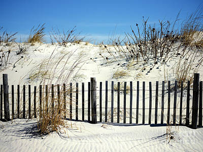 Photograph - Seaside Park Dune Colors by John Rizzuto
