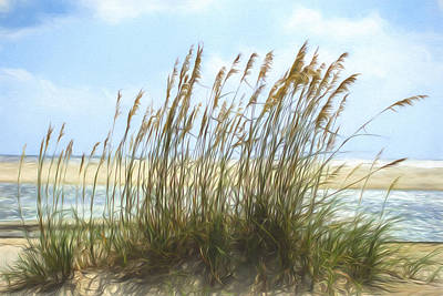 Photograph - Seaside Reeds by Chris Bordeleau