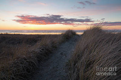 Photograph - Seaside Trail by Idaho Scenic Images Linda Lantzy