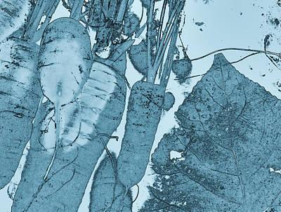 Digital Art - Season Equalizer by Aliceann Carlton