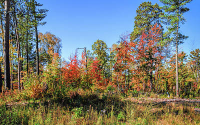 Photograph - Season Of Color by John M Bailey