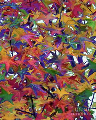 Photograph - Seasonal Colors by Scott Cameron