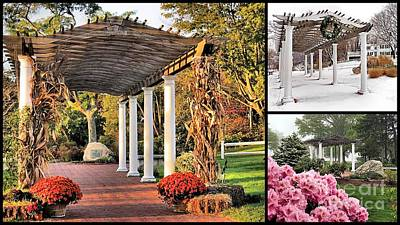 Photograph - Seasons At Brewster Gardens by Janice Drew