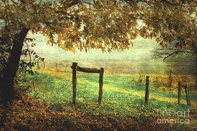 Fence Row Photograph - Seasons Ending by Michael Eingle