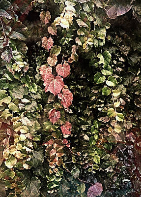 Wall Art - Digital Art - Seasons by George Michael
