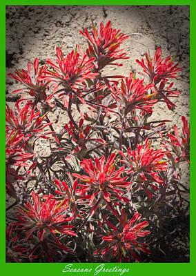 Seasons Greetings 2010 Art Print