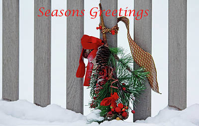 Photograph - Seasons Greetings Bench by Debbie Oppermann