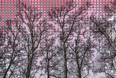 Photograph - Seasons Greetings  by Marco Prado