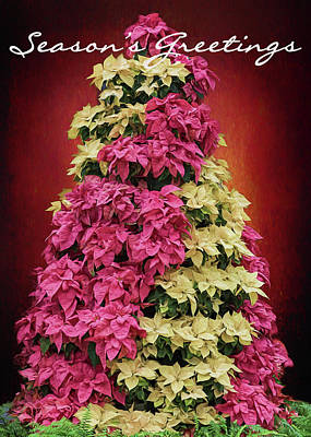 Photograph - Season's Greetings - Poinsetta Tree by Susan Rissi Tregoning