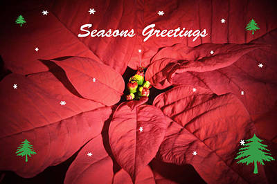 Seasons Greetings Original