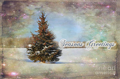 Christmas Holiday Scenery Photograph - Season's Greetings by Teresa Zieba