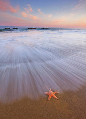 Royalty-Free and Rights-Managed Images - Seastar Sunrise by Darren White