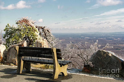 Photograph - Seat With A View by Nicki McManus