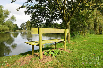 Pond Lake Photograph - Seat With A View by Nichola Denny