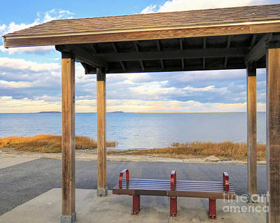 Photograph - Seat With Ocean View  by Janice Drew