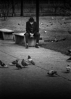 Photograph - Seated Man With Park Pigeons by Randall Nyhof