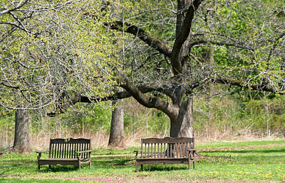 Photograph - Seating For Four by Living Color Photography Lorraine Lynch