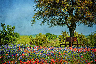 Art Print featuring the photograph Seating For Two by Ken Smith