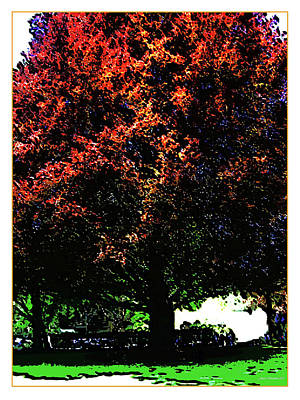 Digital Art - Seattle Chateau Ste Michelle Tree by Joan  Minchak
