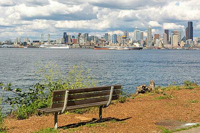 Photograph - Seattle City Skyline View From Alki Beach by David Gn
