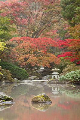 Koi Photograph - Seattle Japanese Garden by Thorsten Scheuermann
