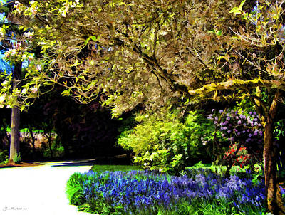 Photograph - Seattle Pathway by Joan  Minchak
