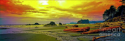 Photograph - Seattle Wa. Ruby Beach by Tom Jelen