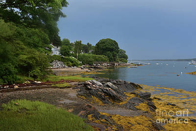 Ocatagon Photograph - Seaweed Covered Rocks On The Coast Of Bustin's Island by DejaVu Designs