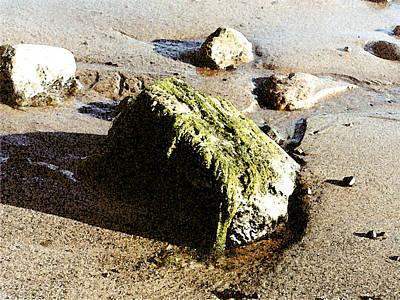 Painting - Seaweed Rock by Paul Sachtleben