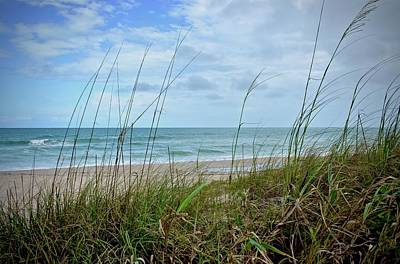 Photograph - Sebastian Inlet South Beach by Carol Bradley
