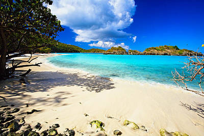 Caribbean Corner Photograph - Secluded  Beach by George Oze