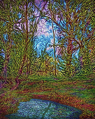 Digital Art - Secluded Stream by Joel Bruce Wallach