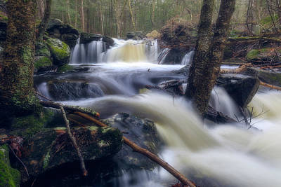 Photograph - Secluded Waterfall by Brian Hale