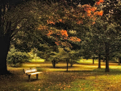Fall Foliage Photograph - Seclusion by Jessica Jenney