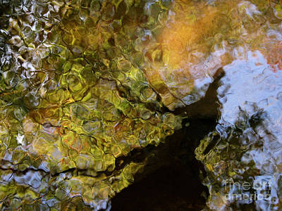 Tropical Stain Glass Photograph - Second Earth by Joanne Baldaia - Printscapes