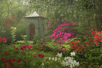 Photograph - Secret Alcove by Kim Carpentier
