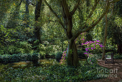 Photograph - Secret Garden by David Zanzinger