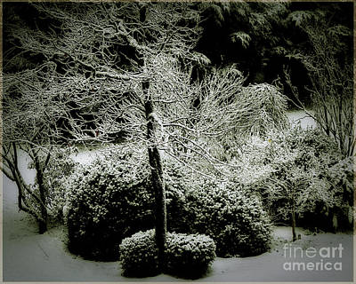 Photograph - Secret Garden by Edmund Nagele