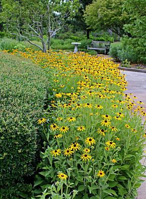 Photograph - Secret Garden by Judy Vincent
