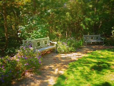 Photograph - Secret Garden by Rodney Lee Williams