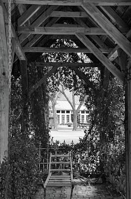 Photograph - Secret Garden by Teresa Blanton