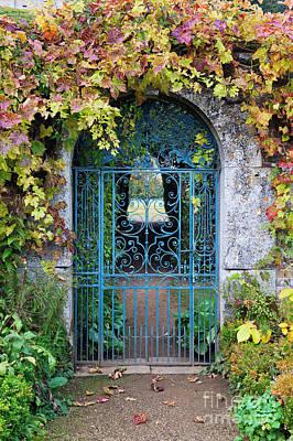 Grape Vine Photograph - Secret Garden by Tim Gainey