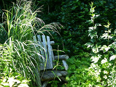 Fushia Photograph - Secret Garden by Tina M Wenger
