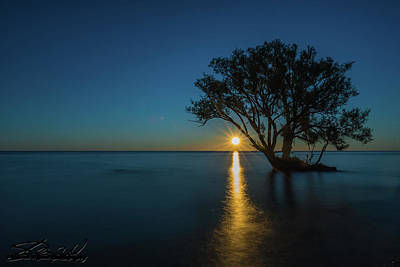 Photograph - Secret Place by Steven Wilson