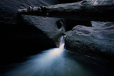 Photograph - Secret Stream by Edgars Erglis