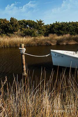 Photograph - Secret Treasure On The Outer Banks by Dan Carmichael